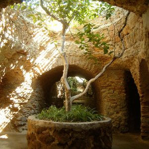 Week of July 28th: A family outing to for up to 6 for a guided tour of Forestiere Underground Gardens