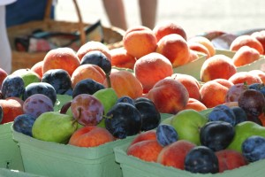 Organic Stone Fruit Festival @ MOA Oasis Gardens | Clovis | California | United States